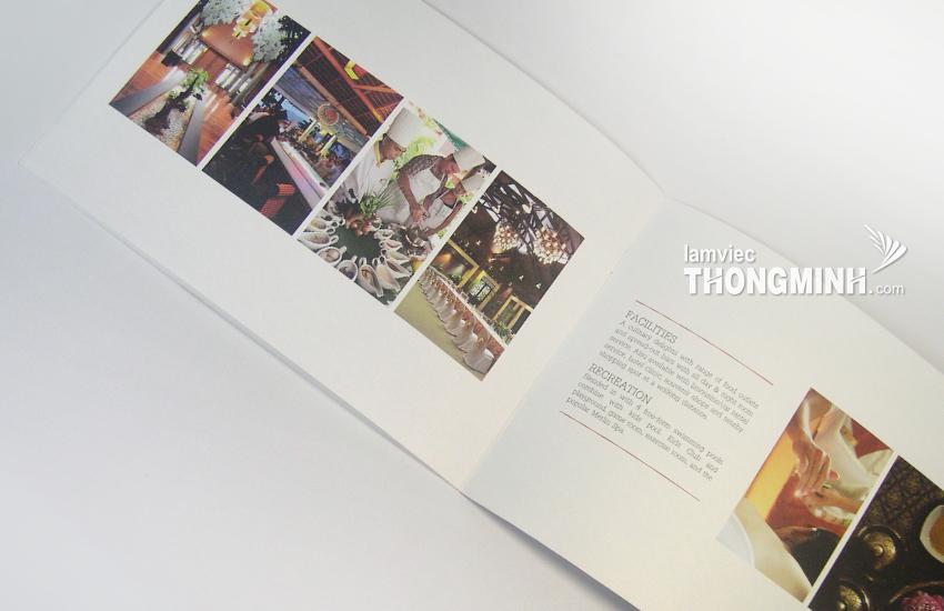 Mẫu Brochure - Profile 001