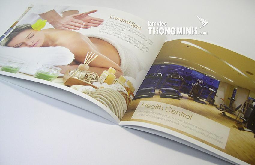 Mẫu Brochure - Profile 005