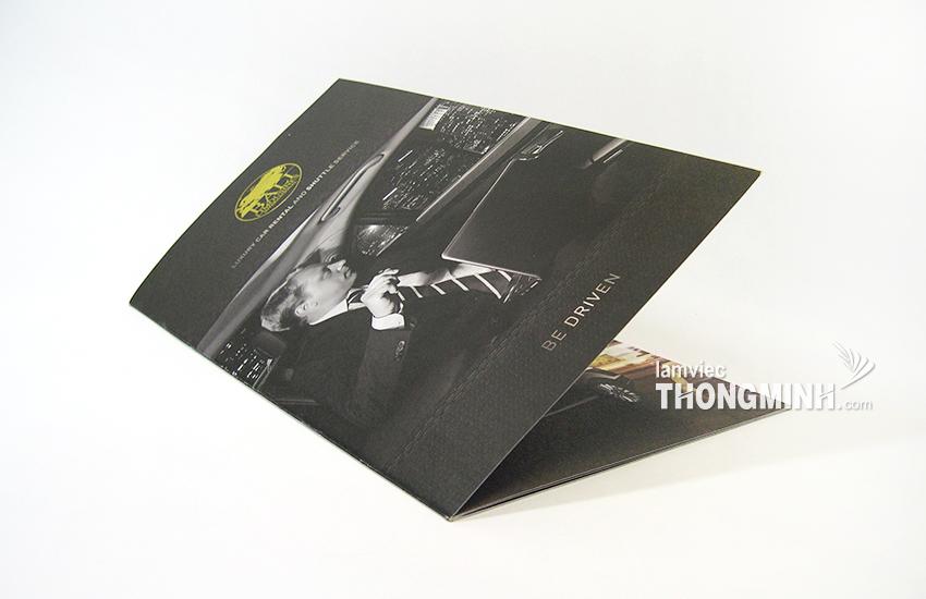 Mẫu Brochure - Profile 006