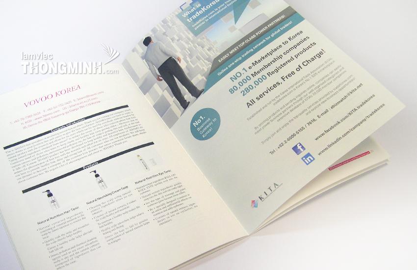 Mẫu Brochure - Profile 008