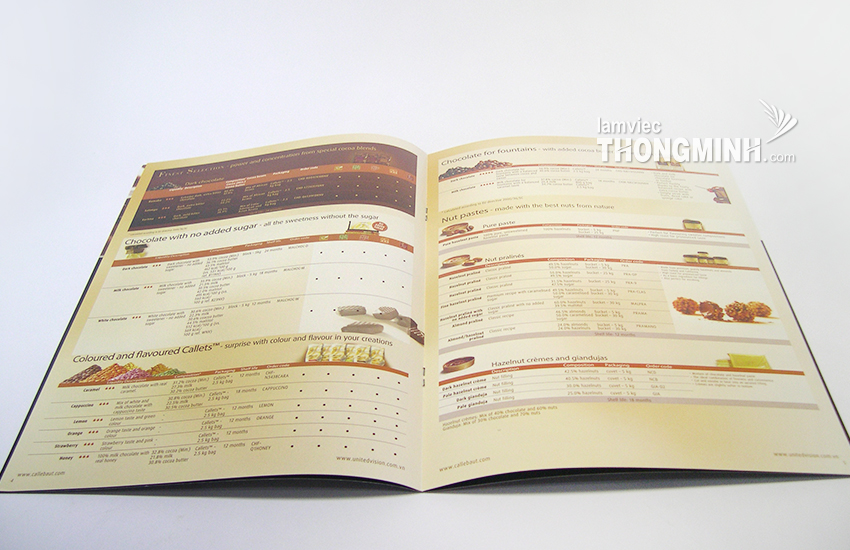 Mẫu Brochure - Profile 017