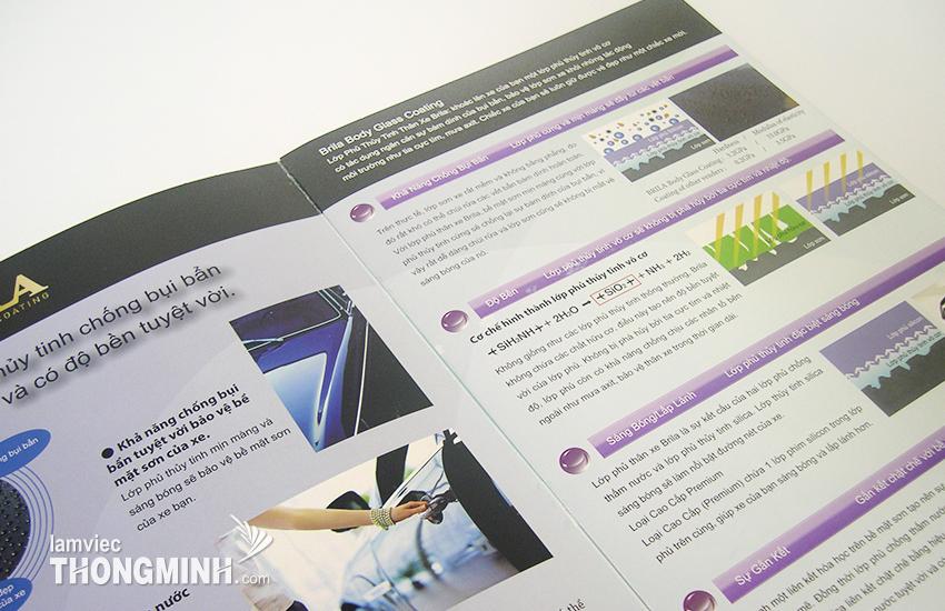 Mẫu Brochure - Profile 020