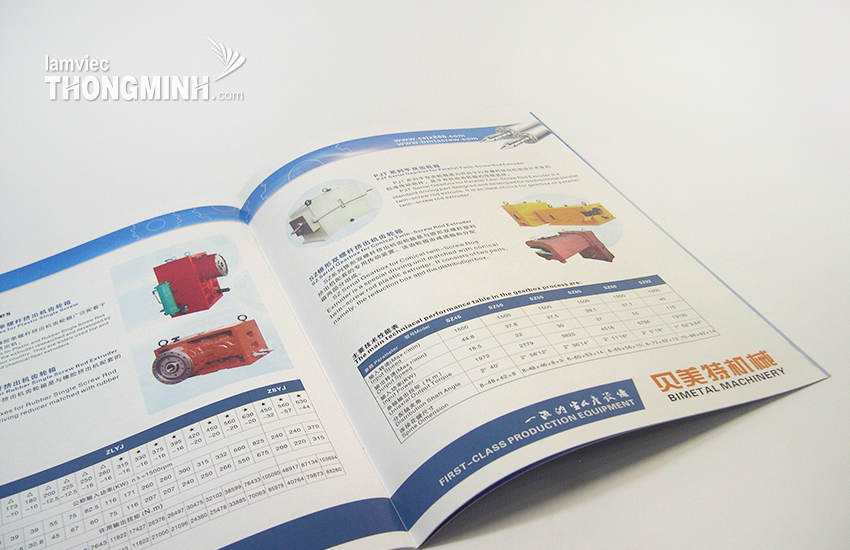 Mẫu Brochure - Profile 043